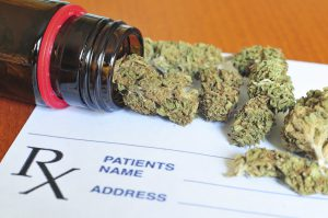 Photo of dry medical marijuana buds with shallow DOF