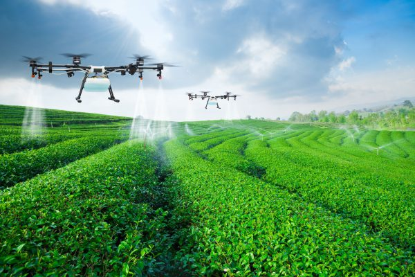 Drones Over Pesticide Field
